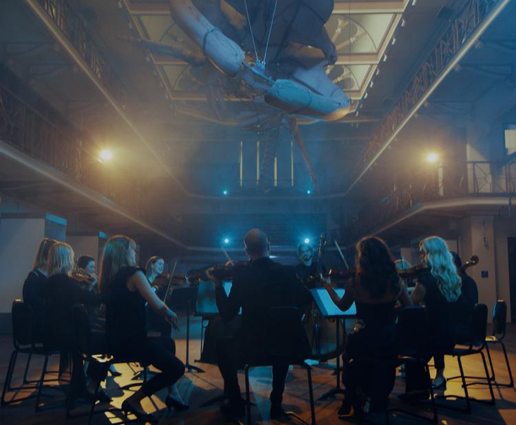 Classical musicians playing underneath the whale skeleton