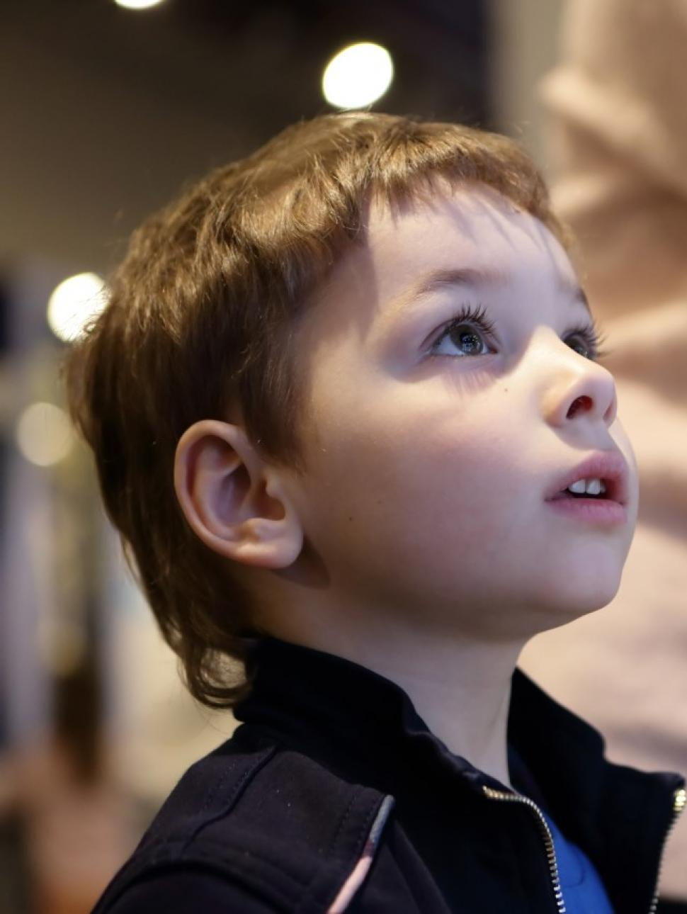 Small child looking at a Museum exhibit