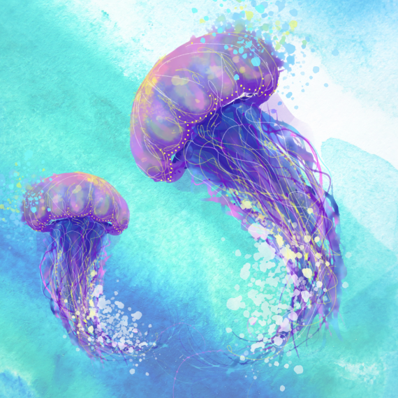 A stylised drawing of two sea jellies.